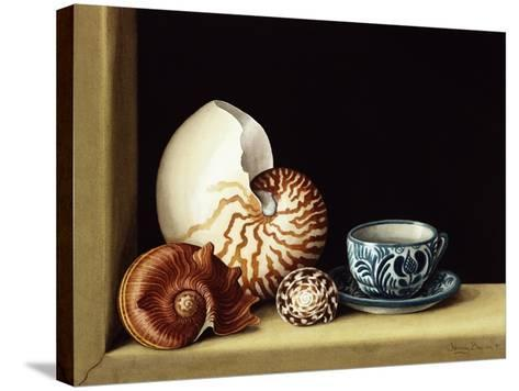 Still Life with Nautilus, 1998-Jenny Barron-Stretched Canvas Print