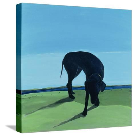 Joe's Black Dog, 1996-Marjorie Weiss-Stretched Canvas Print