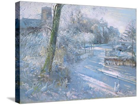 Hoar Frost Morning, 1996-Timothy Easton-Stretched Canvas Print