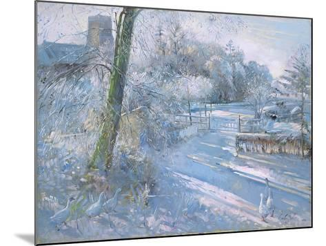 Hoar Frost Morning, 1996-Timothy Easton-Mounted Giclee Print
