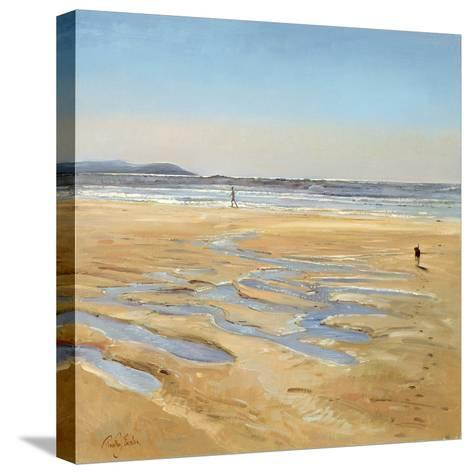 Beach Strollers-Timothy Easton-Stretched Canvas Print