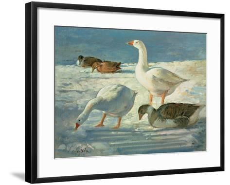 Geese and Mallards, 2000-Timothy Easton-Framed Art Print