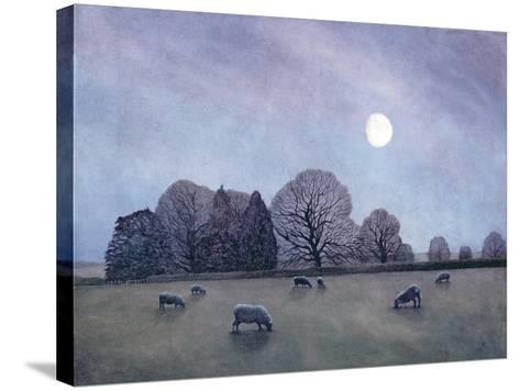 Moonlit Night, 2004-Ann Brain-Stretched Canvas Print