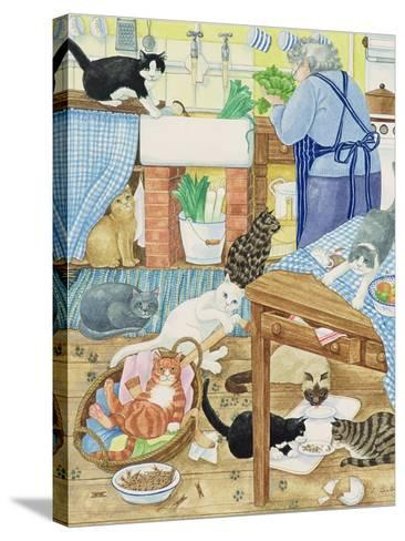 Grandma and 10 Cats in the Kitchen-Linda Benton-Stretched Canvas Print
