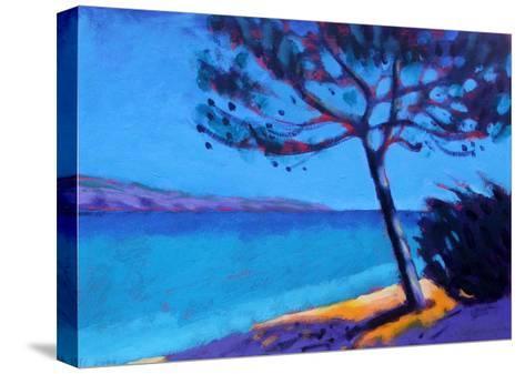 Pine Trees-Sara Hayward-Stretched Canvas Print