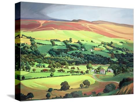 Welsh Valley-Anna Teasdale-Stretched Canvas Print