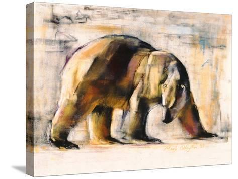 Arctic, 1999-Mark Adlington-Stretched Canvas Print