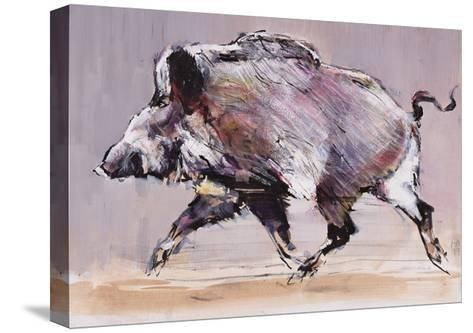 Running Boar, 1999-Mark Adlington-Stretched Canvas Print