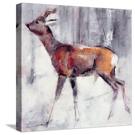 Buck in the Snow, 2000-Mark Adlington-Stretched Canvas Print