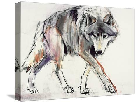 Wolf-Mark Adlington-Stretched Canvas Print
