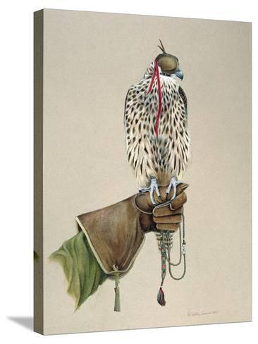 Saker on a Falconer's Wrist, 1981-Mary Clare Critchley-Salmonson-Stretched Canvas Print