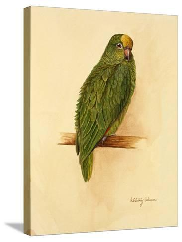 Amazon Green, 1984-Mary Clare Critchley-Salmonson-Stretched Canvas Print