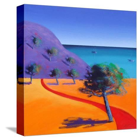 Red Path-Paul Powis-Stretched Canvas Print