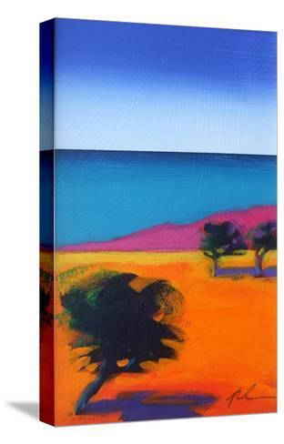 Seaview-Paul Powis-Stretched Canvas Print