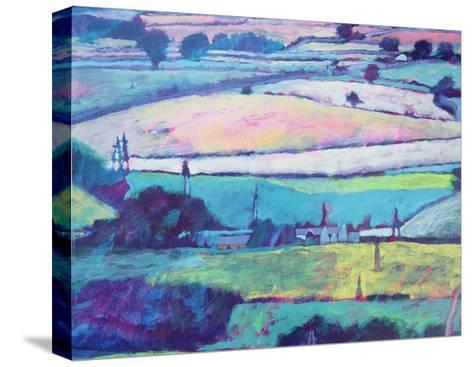 Farm-Paul Powis-Stretched Canvas Print