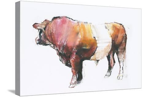 Zeus (Looking Away) 2006-Mark Adlington-Stretched Canvas Print
