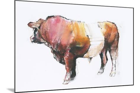 Zeus (Looking Away) 2006-Mark Adlington-Mounted Giclee Print