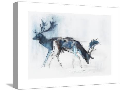 Fallow Bucks, Richmond, 2006-Mark Adlington-Stretched Canvas Print