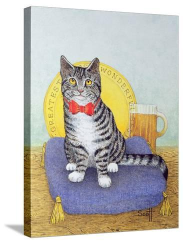 Mr Wonderful-Pat Scott-Stretched Canvas Print