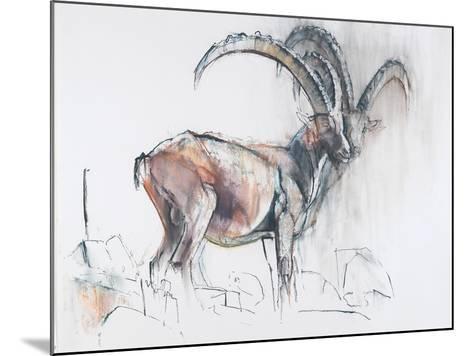 Col Di Vermianaz-Mark Adlington-Mounted Giclee Print