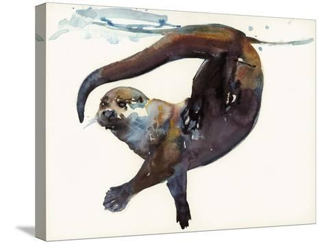 Otter Study II -'Talisker'-Mark Adlington-Stretched Canvas Print