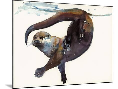 Otter Study II -'Talisker'-Mark Adlington-Mounted Giclee Print