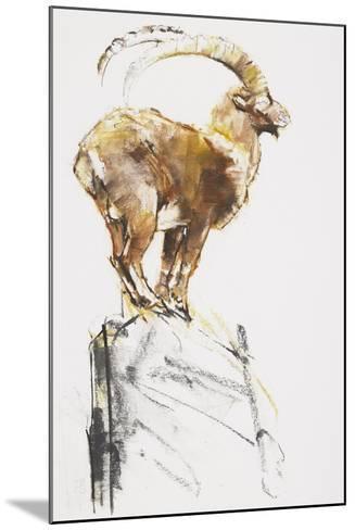 Stambecco d'Oro, 2005-Mark Adlington-Mounted Giclee Print