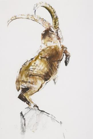King of the Mountain, 2005-Mark Adlington-Stretched Canvas Print