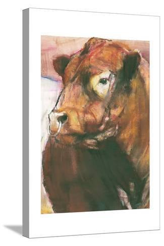 Zeus, Red Belted Galloway Bull, 2006 (Detail)-Mark Adlington-Stretched Canvas Print