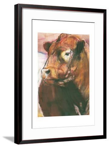 Zeus, Red Belted Galloway Bull, 2006 (Detail)-Mark Adlington-Framed Art Print