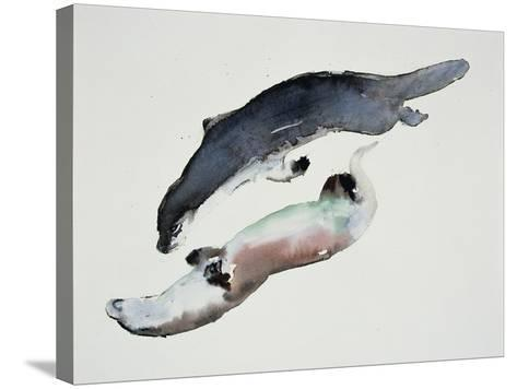 Yin Yang-Mark Adlington-Stretched Canvas Print