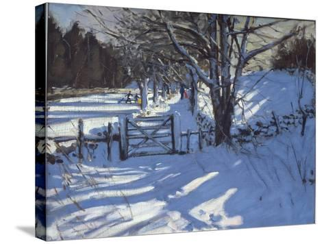 Gate Near Youlgreave, Derbyshire-Andrew Macara-Stretched Canvas Print