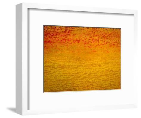 About 2500 Tigers, 2008-Charlie Baird-Framed Art Print