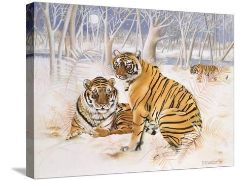 Tigers in the Snow, 2005-E.B. Watts-Stretched Canvas Print