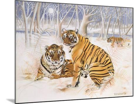 Tigers in the Snow, 2005-E.B. Watts-Mounted Giclee Print