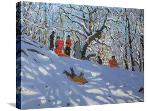 Sledging in Allestree Woods, 2011-Andrew Macara-Stretched Canvas Print