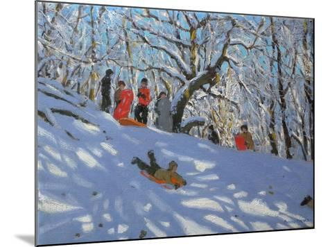 Sledging in Allestree Woods, 2011-Andrew Macara-Mounted Giclee Print