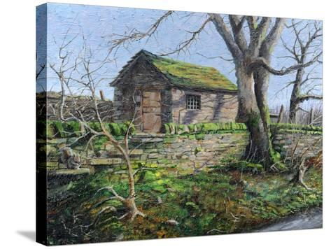 Stone Barn, Alport, Derbyshire, 2009-Trevor Neal-Stretched Canvas Print