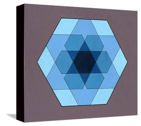 Overlaying Hexagons, 2009-Peter McClure-Stretched Canvas Print