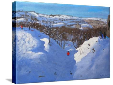 Gully, Black Rocks, Derbyshire, 2009-Andrew Macara-Stretched Canvas Print