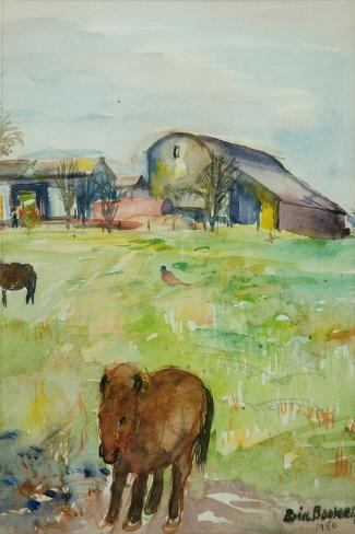 Pony in the Farm Meadow, East Green, 1980-Brenda Brin Booker-Stretched Canvas Print