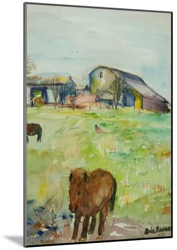 Pony in the Farm Meadow, East Green, 1980-Brenda Brin Booker-Mounted Giclee Print