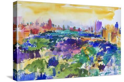 Central Park, New York, 2011-Peter Graham-Stretched Canvas Print