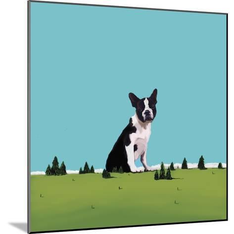 Boston Terrier, 2008-Marjorie Weiss-Mounted Giclee Print
