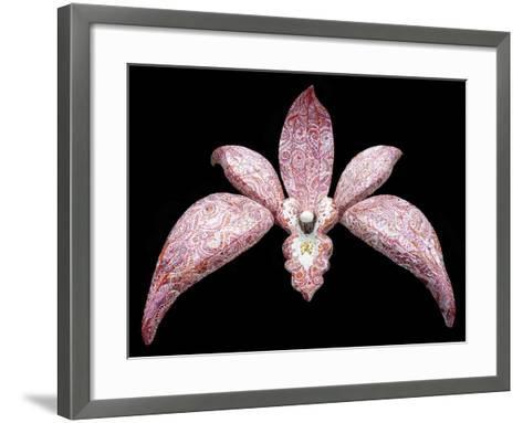 Orchid, 2011-Maylee Christie-Framed Art Print