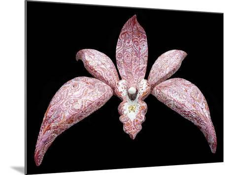 Orchid, 2011-Maylee Christie-Mounted Giclee Print