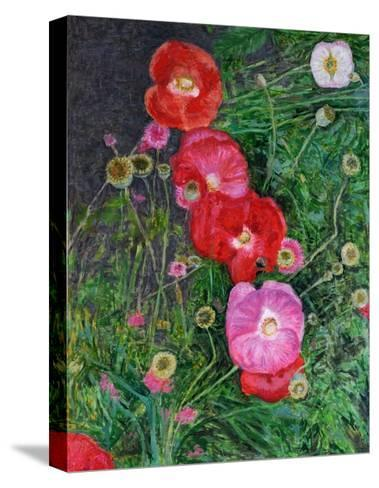Poppies, 2009-Ruth Addinall-Stretched Canvas Print