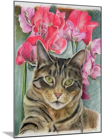 Cat with Sweet Peas-Anne Robinson-Mounted Giclee Print