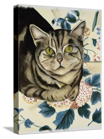 Tabby Cat-Anne Robinson-Stretched Canvas Print