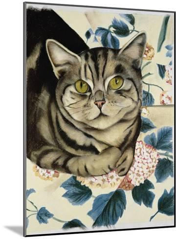 Tabby Cat-Anne Robinson-Mounted Giclee Print